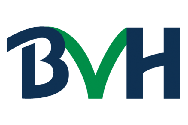 Bonanza Venture Holdings
